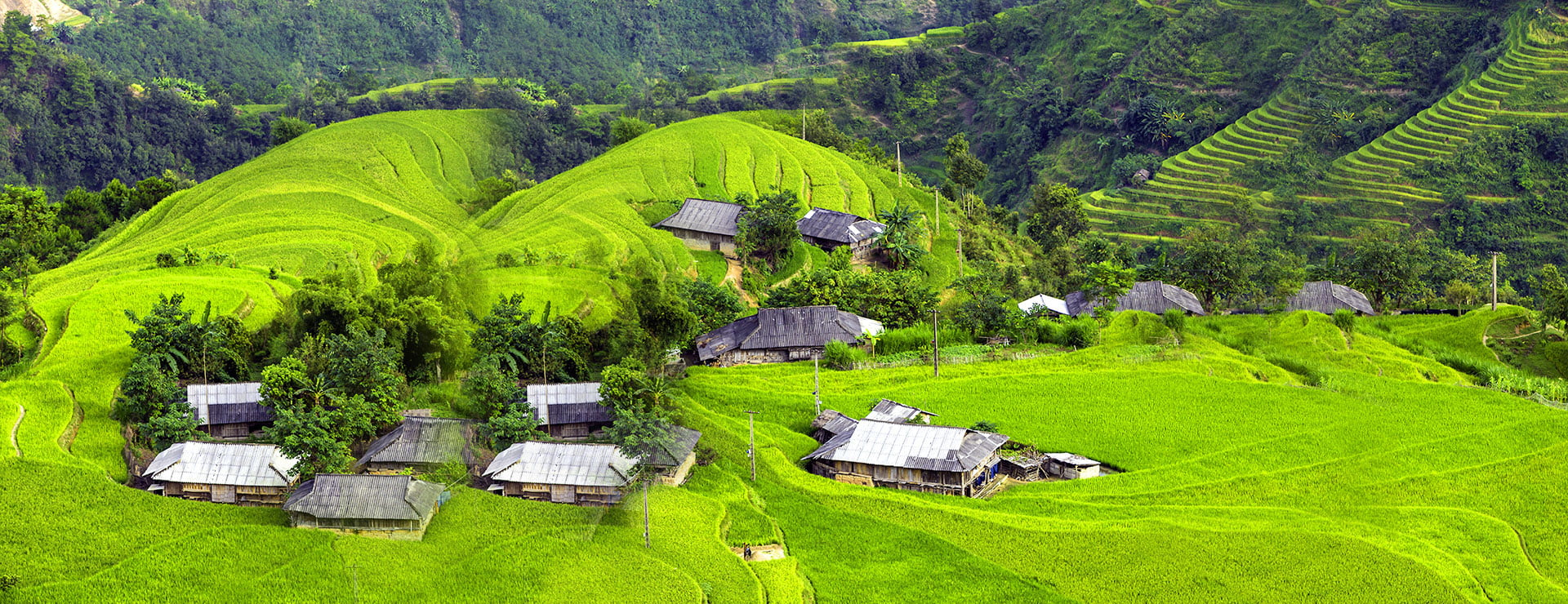 Visit these northern provinces of Vietnam in late autumn
