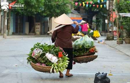 Hanoi and Halong Bay Tour
